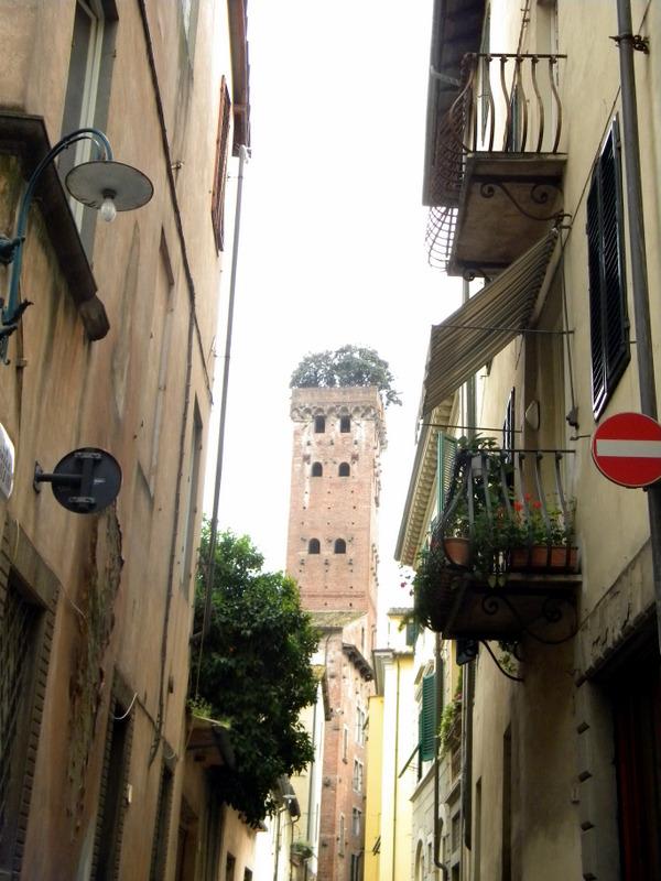 La tour Guinigui, Lucques, Toscane, Italie