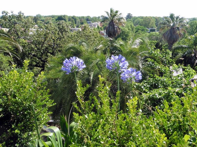 Vue sur les jardins