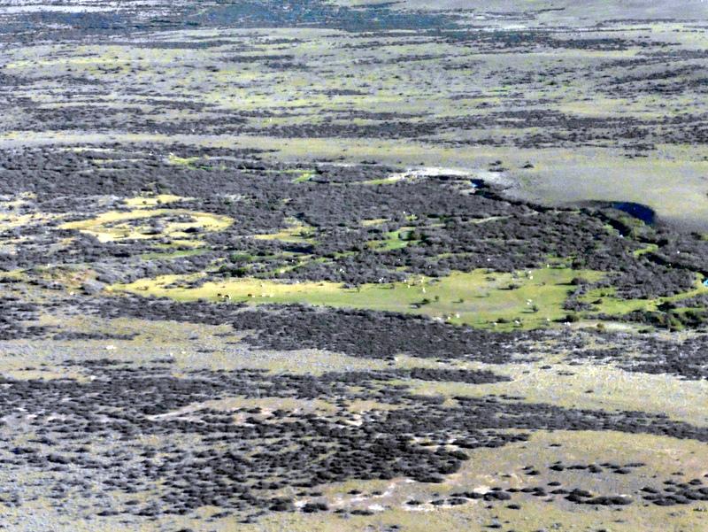 La steppe de Patagonie, vue d'avion