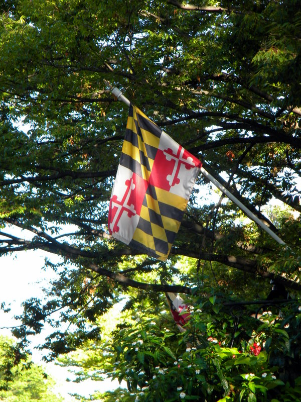 Drapeau du Maryland
