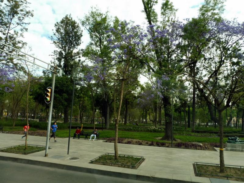 Le parc de l'Alameda
