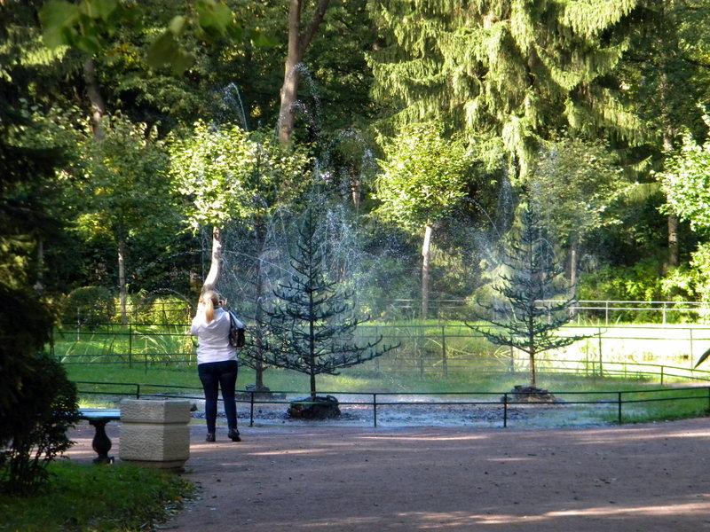 Fontaine-Surprise Le Sapin