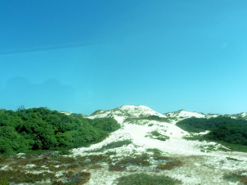 Cordon de dunes