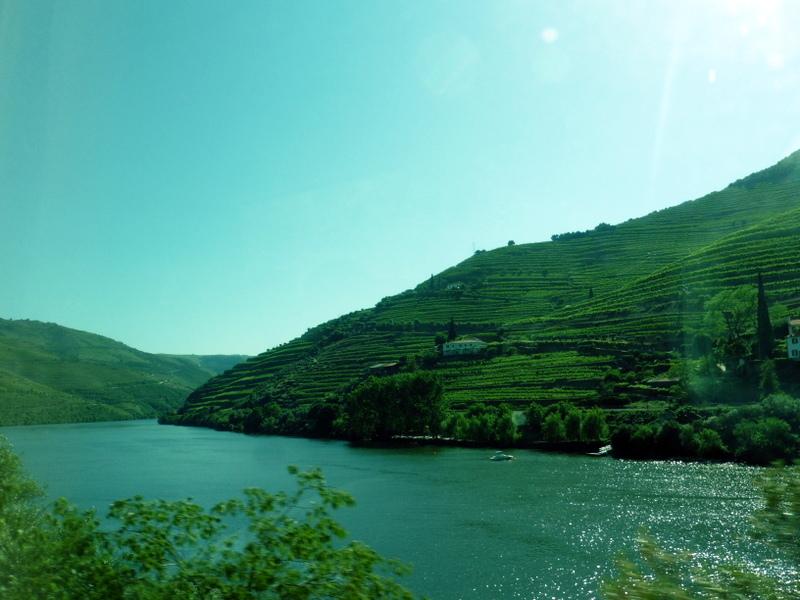 Les rives cultivées du Douro