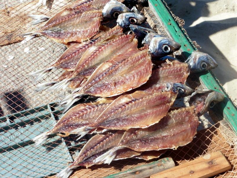 Séchage des sardines
