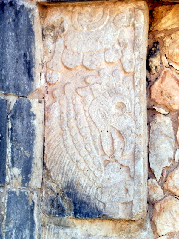 Le Temple des Aigles-Un aigle