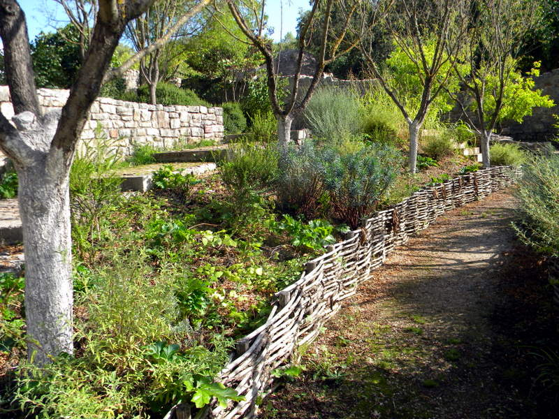 Abbaye du Thoronet, jardin des simples