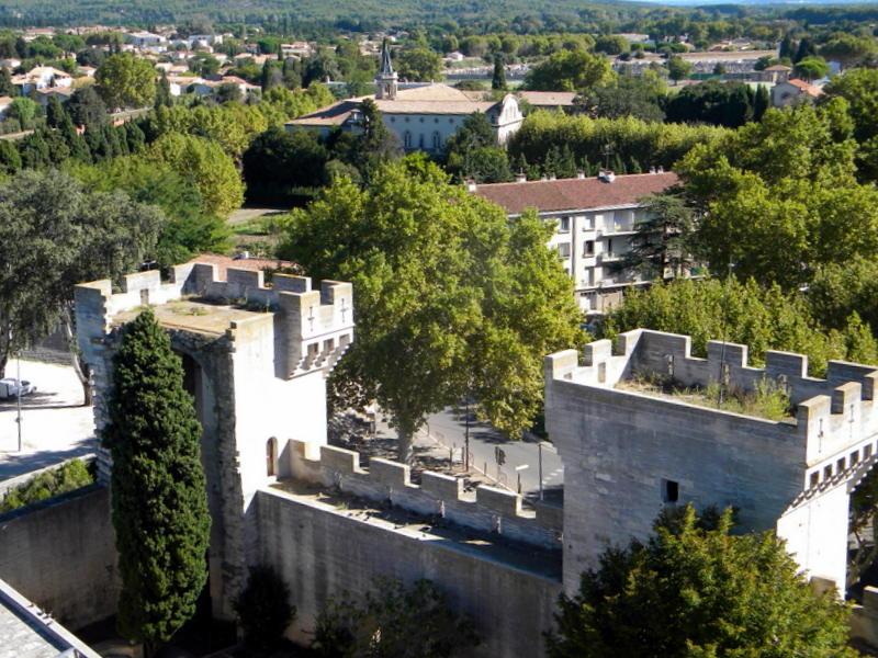 Tarascon, terrasse du château, vue de la ville